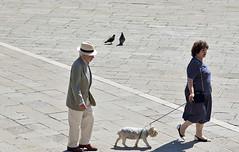 Venezia (Marina Nozyer) Tags: street old venice shadow italy woman dog man daylight photo couple day venezia