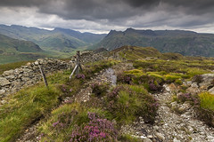 LINGMOOR FELL (Steve Boote..) Tags: sky clouds fence landscape nationalpark heather lakes lakedistrict cumbria fell langdale manfrotto langdalepikes northwestengland sigma1020f456exdchsm canoneos7d steveboote