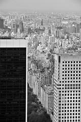 urban landscape (Enrico Casagni) Tags: blackandwhite bw newyork architecture canon unitedstates centralpark manhattan bn architettura topoftherock biancoenero urbanlandscape rockfellercenter statiuniti paesaggiourbano eos50d 1585isusm