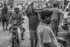 Negombo fish market_Sri Lanka_2 (Dan Bernard 131 Design) Tags: people photography hampshire srilanka travelphotography srilankans imagesofsrilanka danbernard 131design tricornbooks