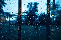 (Federico Pelloni) Tags: blue autumn blur window rain drops blu blurred finestra autunno pioggia gocce sfocato