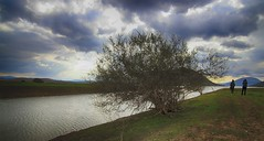 Complicated (Simos1968) Tags: lake cold tree photographer hdr photographingthephotographer ilili