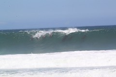 Dolphins surfing (Cape Town Guy) Tags: ocean sea wave capetown dolphins kogelbay dolphinssurfing