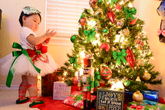 Christmas (Vivid Moments by Amanda) Tags: christmas flowers red baby flower tree green love beauty portraits amazing glamour nikon ballerina perfect babies glow photos vibrant awesome surreal presents motivation glowing breathtaking tutu beatiful vibrance
