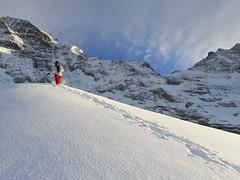 Powder (thomas.janisch) Tags: winter mountain snow mountains alps switzerland skiing running powder grindelwald eiger jungfrau mnch