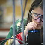 A student working on an experiment