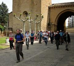 "Guías Acompañantes Camino de Santigo Navarra 28 <a style=""margin-left:10px; font-size:0.8em;"" href=""http://www.flickr.com/photos/116167095@N07/12268137676/"" target=""_blank"">@flickr</a>"
