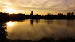 Golden twilight (*Gitpix*) Tags: park autumn trees sunset oktober sun lake fall nature clouds reflections landscape gold dawn golden see twilight october sonnenuntergang sony herbst natur wolken dmmerung landschaft sonne bume baum spiegelungen sel1855 sonynex7 sonysel18551855mm {vision}:{sunset}=0873 {vision}:{sky}=0981 {vision}:{clouds}=0958 {vision}:{outdoor}=0566