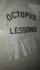 "NOT ART is offering Octopus Lessons • <a style=""font-size:0.8em;"" href=""http://www.flickr.com/photos/54135982@N06/13787835613/"" target=""_blank"">View on Flickr</a>"
