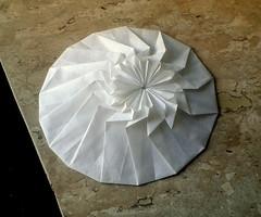 Ellipse (orig4mi.) Tags: paper origami ellipse fold