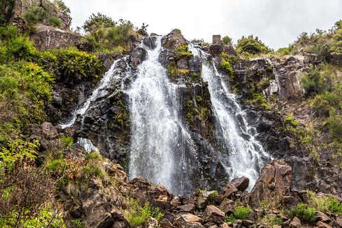 Waratah Waterfall