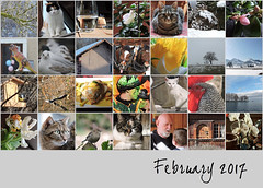 February 2017 mosaic (keepps) Tags: month mosaic bighugelabs