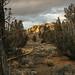 Black Hills Recreation Area