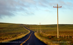 Lonesome Roads of Point Reyes (judetibay) Tags: california point marin national pointreyes seashore reyes