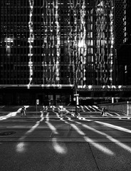 wellington-street_toronto-dominion-centre_reflection-lines_01bwc (daily dose of imagery - archive) Tags: toronto ontario canada alt can winner wvs ddoi dailydoseofimagery samjavanrouh javanrouh ddoi2012