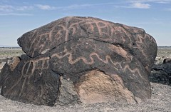 Petroglyphs / Grimes Point Site (Ron Wolf (...detests this new design...)) Tags: archaeology utah nativeamerican vandalism petroglyph anthropology shoshone rockart blm piute numic grimespoint churchillcounty greatbasincurvilinear nvch3