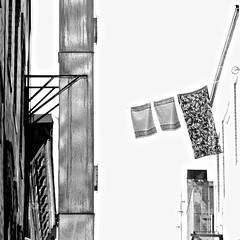 Laundry day (Caladrio) Tags: blackandwhite distortion noiretblanc highcontrast highexposure