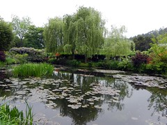 Monet's Water Lily Pond (GingerP43) Tags: france garden pond waterlilies monet giverny