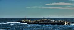 Holtskjær Lighthouse (lars1387) Tags: sea sky panorama lighthouse water norway nikon waves sandefjord vestfold d7000 photoengine