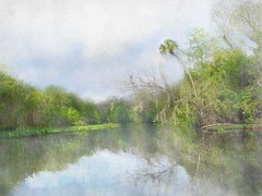 Spring reflections (Solly Avenue) Tags: painterly river ipadpainting