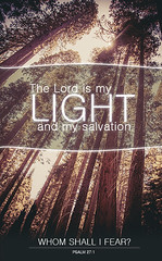 The Lord is my Light (Forgiven!) Tags: trees light hope graphics shine god who jesus lord want 27 shall psalm i