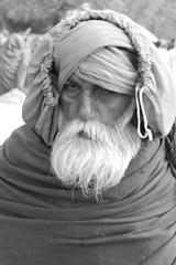 At Maha Kumbh Mela 2013 - #10032013-IMG_0008a (photographic Collection) Tags: portrait bw india saint canon north photographic sage collection 365 maha sadhu mela allahabad northindia penance hws sarma kumbhmela kumbh 2013 550d kalluri t2i photographiccollection bheemeswara bkalluri bheemeswarasarmakalluri mahakumbhmela2013 pryaga