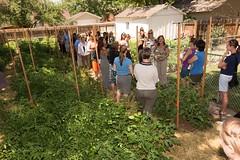_R7A6172 (DU Internal Photos) Tags: garden outdoorgarden sazza sazzaworkshop