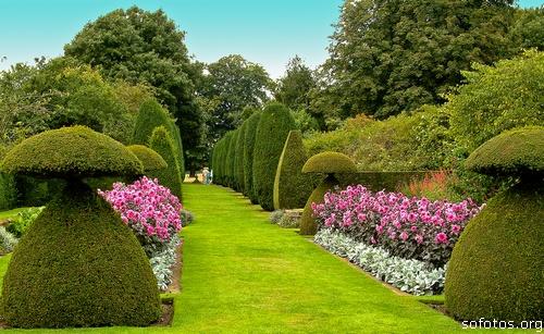 Paisagismo e jardins