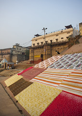 Drying Laundry At Shivala  Ghat, Varanasi, India (Eric Lafforgue) Tags: sky india history vertical architecture facade cat outdoors photography clothing ancient asia stair day dry clean textile step laundry staircase varanasi spirituality copyspace cloth multicolored riverbank hinduism sari abundance washing hygiene contrasts domesticlife variation ganga drying ganges banaras benares ghat washingline veranasi gangesriver uttarpradesh colorimage largegroupofobjects indianculture buildingexterior lowangleview colourimage indiansubcontinent sacredcity indianethnicity shivala incidentalpeople gangasevanidhi eth1064