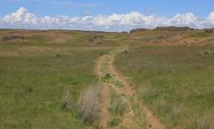 solitude (fly flipper) Tags: snakes rocklake ticks easternwashington escureranch washingtonscablands