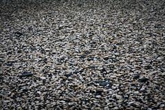 Kapiti Coast Beach (Duncan Herring) Tags: newzealand holiday beach places northisland