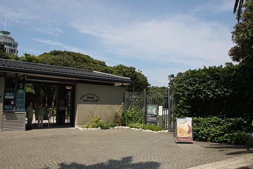 江の島(サミュエルコッキング苑)(Samuel Cocking Garden, Enoshima Island, Kanagawa, Japan)