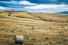 Tuscan countryside near Pienza (Alessandro Boletti) Tags: panorama landscape landscapes countryside campagna tuscany siena toscana paesaggi montichiello