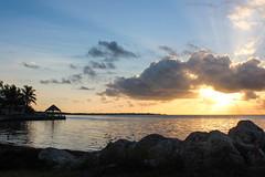 Glorious Morning (BethHarcek - Back on Track) Tags: ocean beach water clouds sunrise palms keys rocks florida hut rays tiki blinkagain bestofblinkwinners blinksuperstars