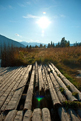 Bright noon at the dock (aitramah) Tags: wood trees sun mountains vertical dock scenery bright verticalphotography