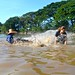 Catching a Mekong Giant Catfish