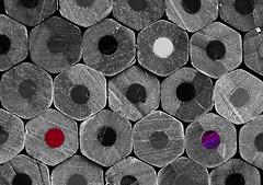 Wood Crayons. (Yvette-) Tags: wood pencilcrayons nikkorf28105mm nikond5100