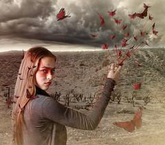 Butterfly Queen (sean.feely) Tags: portrait composite photoshop butterfly fuji fineart retouch xe1