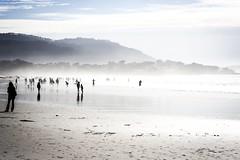 The Fog (Joshuaww) Tags: ocean california blue people white reflection green beach dogs wet water beautiful fog clouds hair reflecting sand rocks waves elizabeth pacific joshua tide rocky wave josh carmel elisabeth outcropping consumed joshuaww