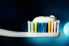 Tooth Brush (skippys1229) Tags: blue stilllife macro canon tooth rebel paste teeth brush toothpaste toothbrush bristles ocala macrolens 2014 marioncounty 952 hss canonef100mmmacrousm 52weeks offcameraflash brushingmyteeth canonef100mmf28macrousm ocalaflorida rebelt1i t1i canonrebelt1i sliderssunday 52weeksof2014