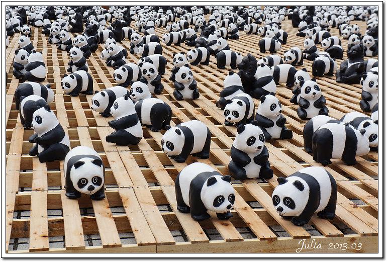 1600貓熊世界之旅 (18)