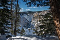 Freeze Frame (dbushue) Tags: trees winter nature landscape waterfall nikon tour canyon yellowstonenationalpark wyoming lowerfalls yellowstoneriver ynp naturalframing artistpoint grandcanyonoftheyellowstone 2014 snowcoach coth absolutelystunningscapes damniwishidtakenthat coth5 dailynaturetnc13 dailynaturetnc14