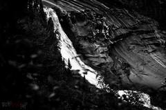 The remains of the Churchill Falls (WhiteFlowersFade) Tags: blackandwhite bw canada nature forest newfoundland river landscape nikon labrador noiretblanc hiking rando north roadtrip canyon rivire falls churchill wilderness paysage nord chutes fleuve randonne tnl terreneuve forts d7k d7000 bowdoincanyon