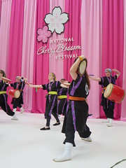 Chin Hamaya Daiko, performing at The National Cherry Blossom Festival, Family Days at The National Building Museum in Washington, D.C. (RYANISLAND) Tags: family pink flowers trees flower tree festival japan kids children cherry fun japanese washingtondc dc washington kid spring cherries blossom families blossoms celebration event national springtime the floweringtree floweringtrees colorpink nationalcherryblossomfestival pinkcolor thenationalcherryblossomfestival