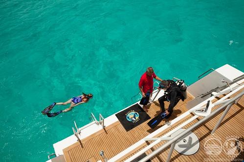 Bahamas CaribDancer platform