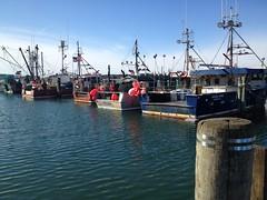 Sandwich Marina, Sandwich (Massachusetts Office of Travel & Tourism) Tags: marina boats dock capecod massachusetts sandwich coastal