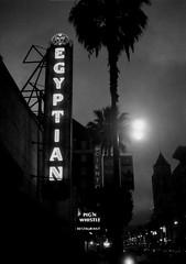 (fritz london) Tags: california blackandwhite film night 35mm losangeles neon theatre xp2 hollywood egyptian halfframe blvd c41 olympuspenee2 ilfordxp2400super