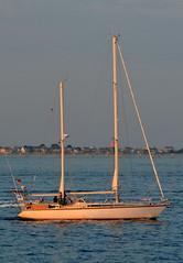 S/V It's All Good (jelpics) Tags: ocean sea boston sailboat port harbor boat ship yacht massachusetts vessel sail mast bostonma rigging bostonharbor itsallgood sailingvessel svitsallgood
