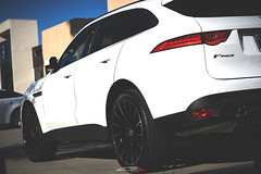 Jaguar F Pace x ACE Devotion (ACEALLOYWHEEL/AMF FORGED) Tags: ace acealloy acealloywheel acedevotion acealloywheels acewheels acewheel jaguar f pace suv aftermarket wheels rims tires pirelli scorpion 22 inch new car cars carswithoutlimits luxury lifted