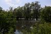 Hochwasser, Untere Havel Nord IV (Ed Fulton) Tags: brandenburg floods hochwasser havelland 2013 canonef24105mmf4lisusm 24105mmlis eos5diii